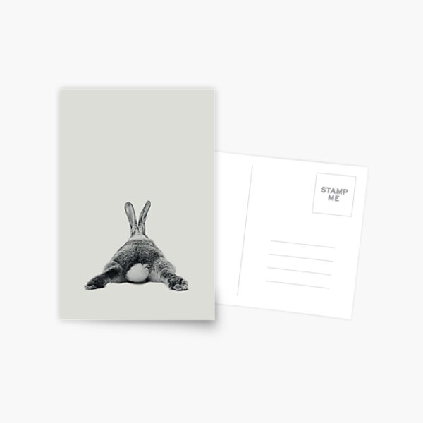 Rabbit 23 Postkarte