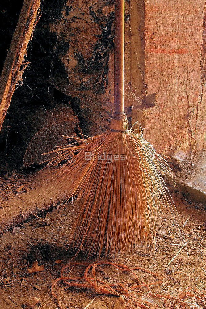 Antique Dust and Broom by Bridges