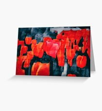 Tulip Field at Night Greeting Card