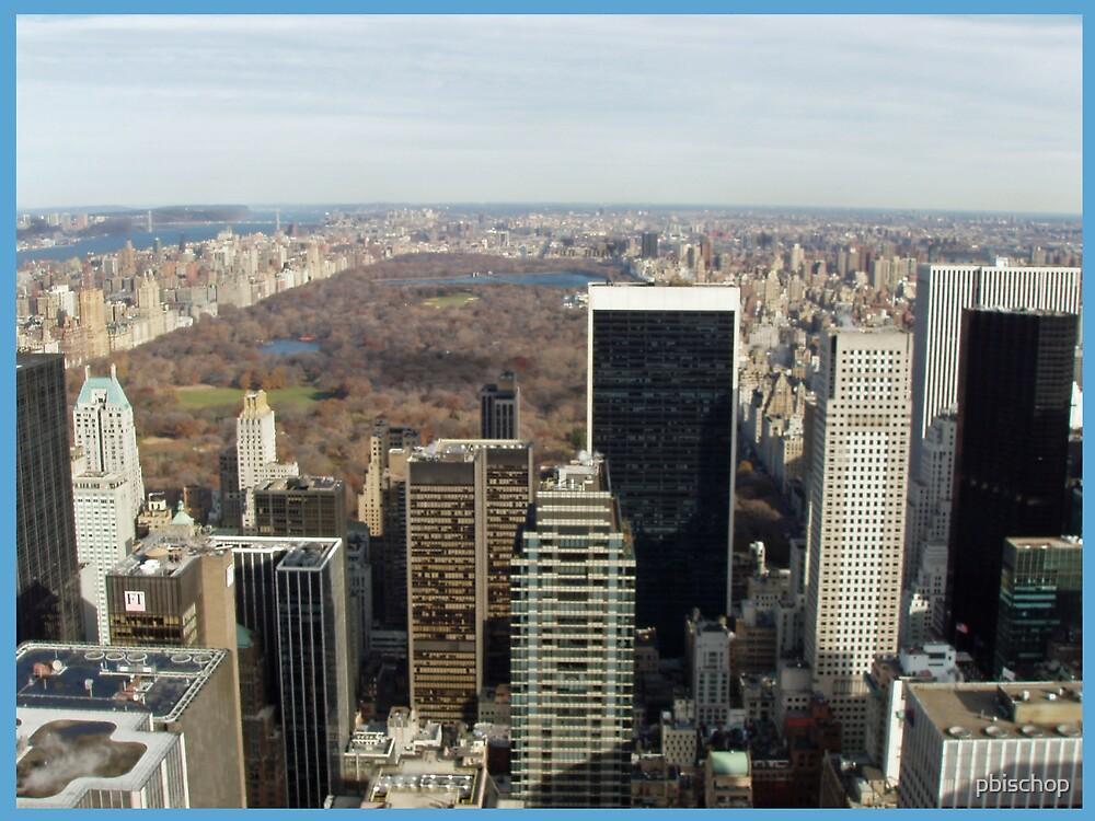 Central Park by pbischop