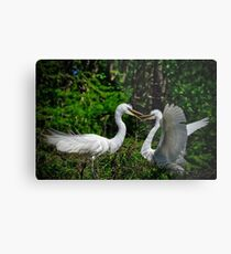 Discussing Planned Parenthood Metal Print