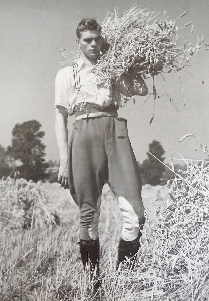 The Farmer 1940  by planete-livres