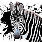 Zebra by Luke Tomlinson