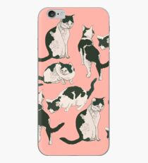 Crazy About Cats iPhone Case