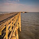The Pier by JEZ22