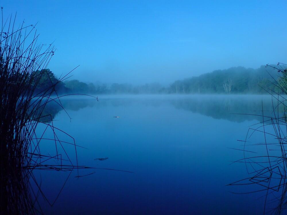 Still Blue by DanGoodwin