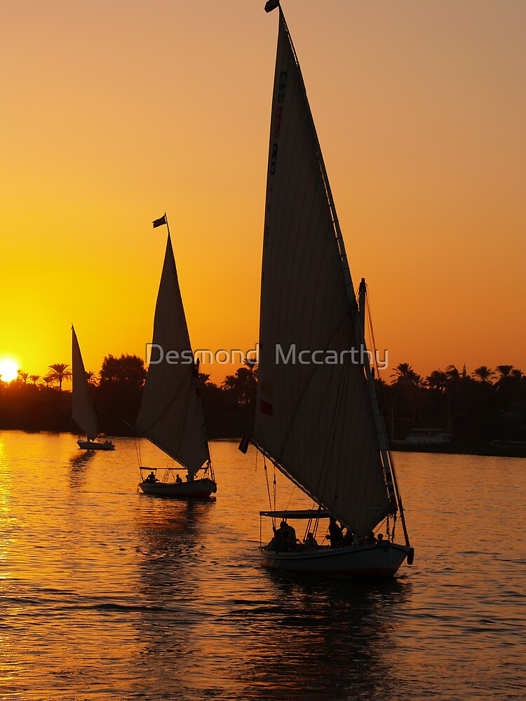 sunset on the nile by Desmond  Mccarthy