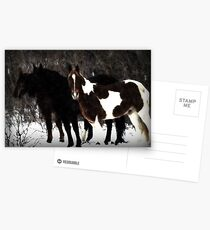 Christmas Eve Horses Postcards