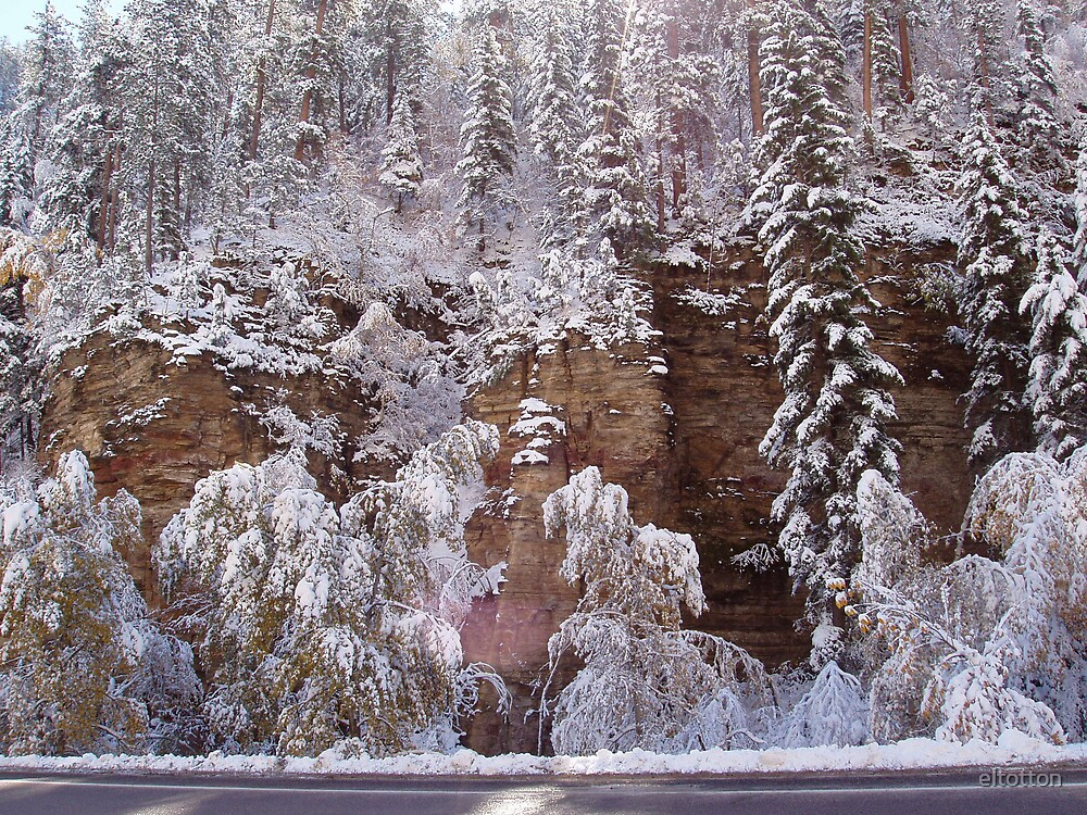 Snow Scene in Spearfish Canyon by eltotton