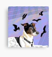 Jack Dreams of Osprey Canvas Print