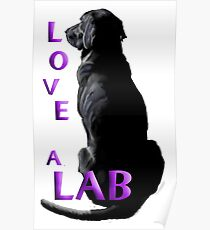 Love a Lab Poster