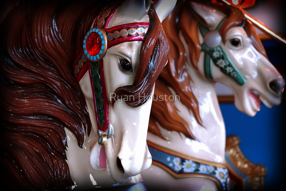 Carousel Horses by Ryan Houston