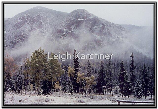 BRIDGER WILDERNESS WINTERSCAPE by Leigh Karchner