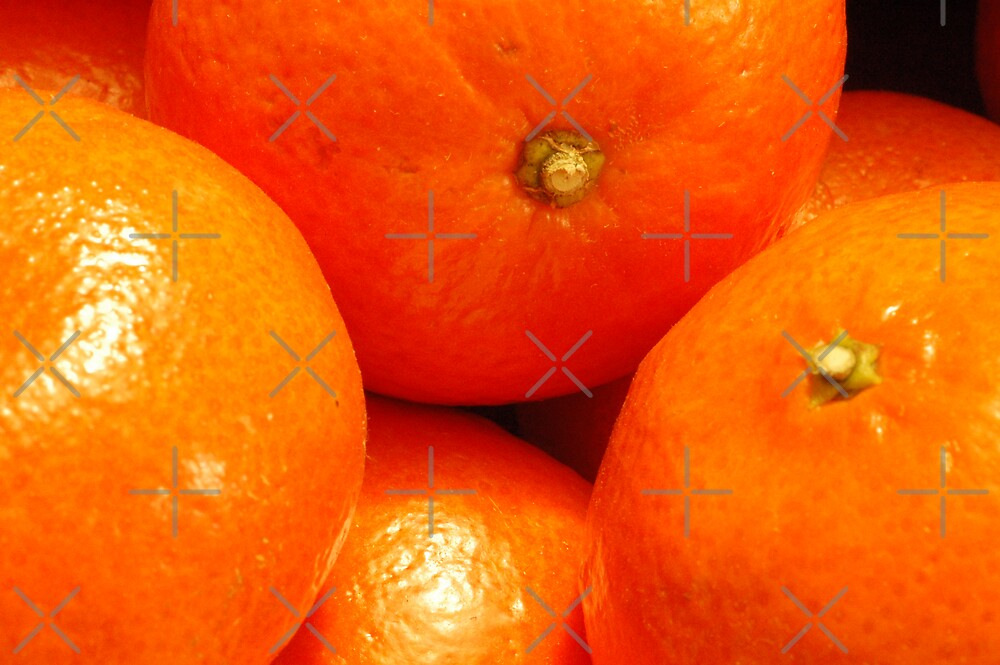 Oranges by ApeArt