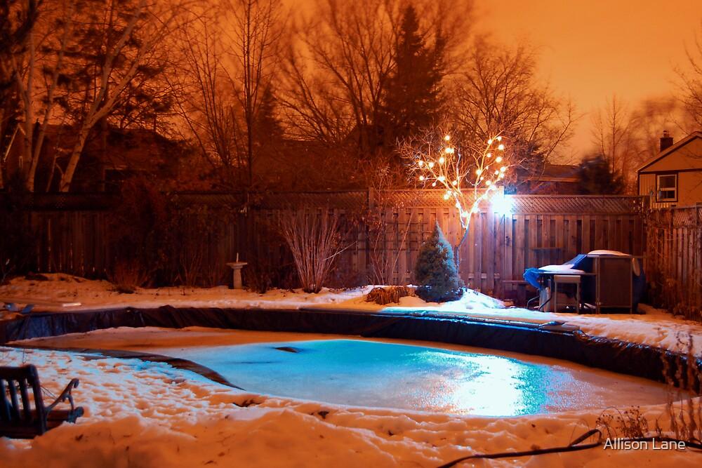Backyard Glowing by Allison Lane