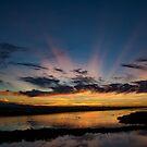 Bolsa Chica Sunrise by CarolM