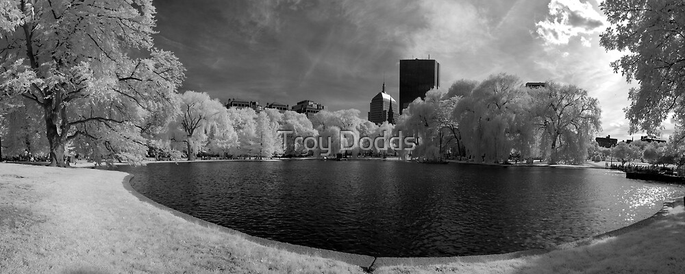 Boston Lagoon Infrared 4 by Troy Dodds
