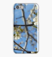 Blossoms of Rebirth iPhone Case/Skin
