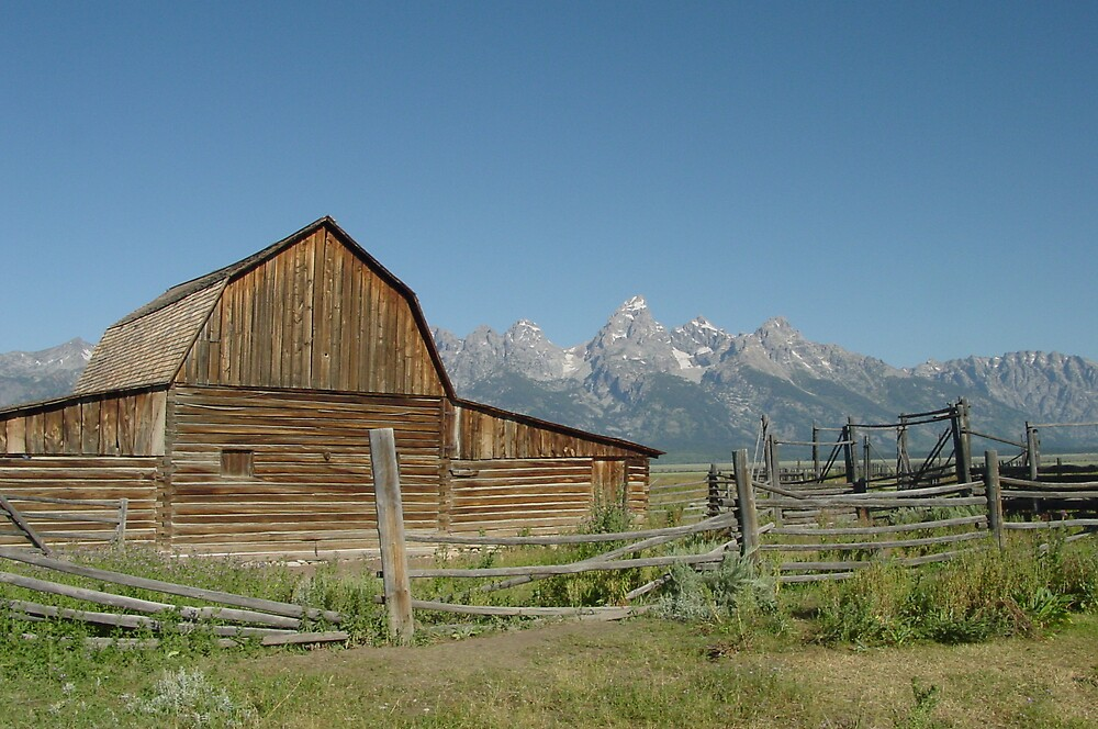Classic Barn  by carick