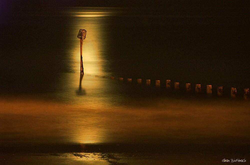 In the moonlight by Glen Birkbeck