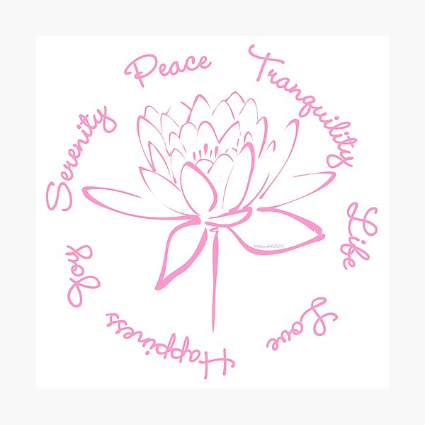 Serenity Tranquility Lotus (Pink) Photographic Print
