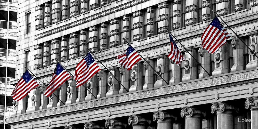 America the Beautiful... by Eolea