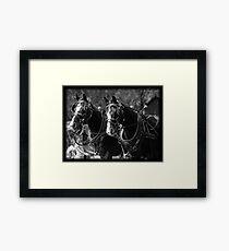 Horses Pulling Hearse Framed Print