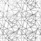 Poly Universe IV by mindydidit