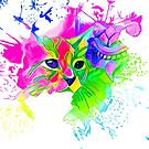 Psychedelic Cat by Adamhass