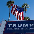 Donald Trump Campaign Sign with Huge USA Flag by DARRIN ALDRIDGE