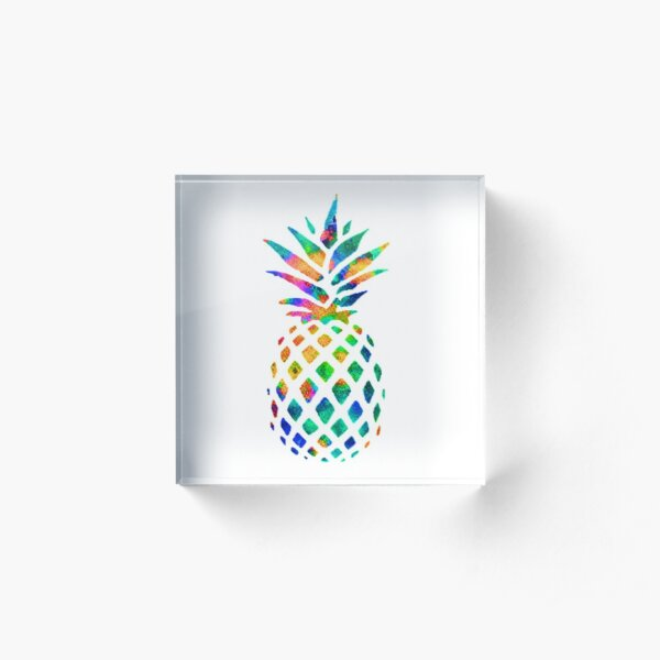 Rainbow Pineapple Acrylic Block