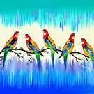 Rosellas by cathyjacobs