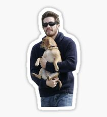 jake gyllenhaal doesn't know how to hold dogs Sticker