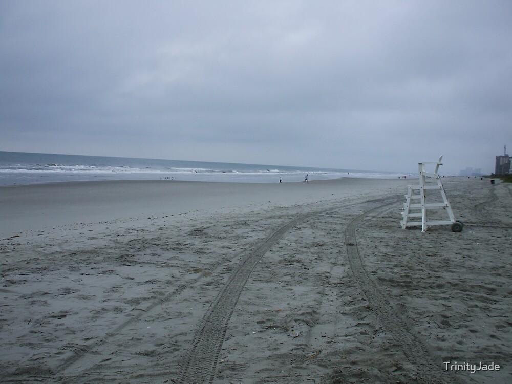 A Walk on The Beach by TrinityJade
