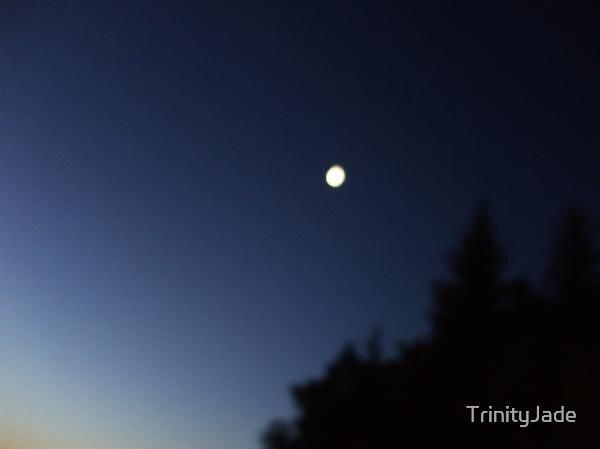 Good Night Moon... by TrinityJade