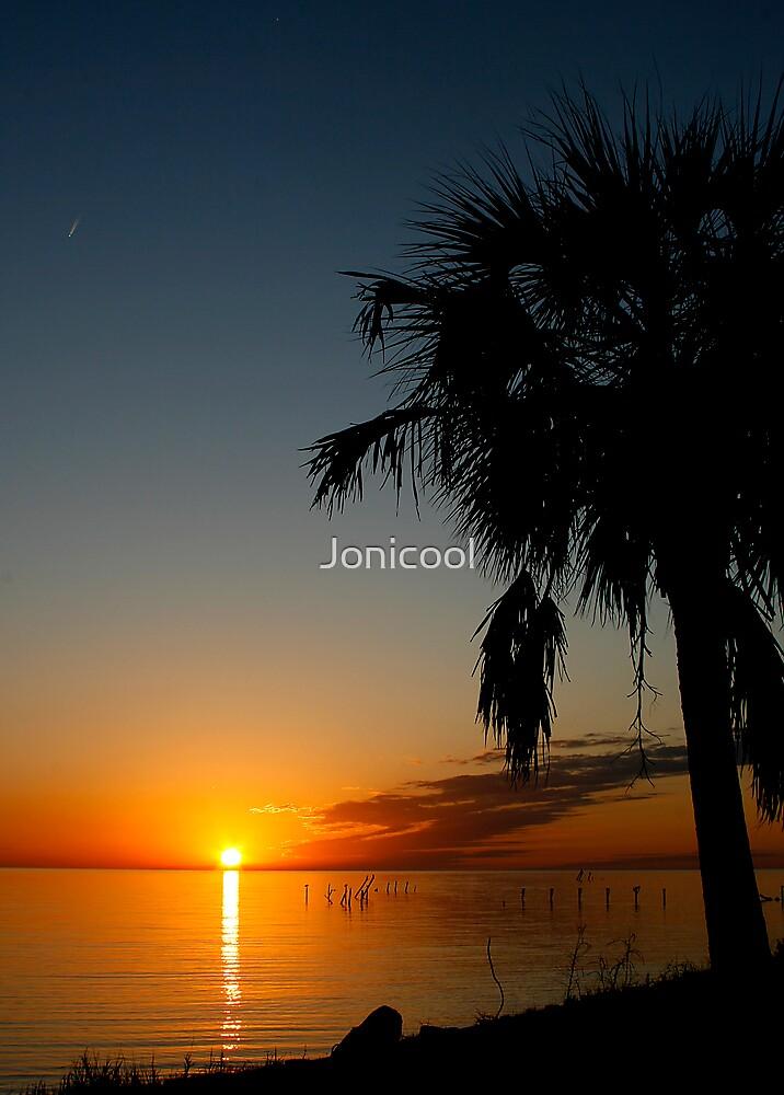 A Beautiful End by Jonicool