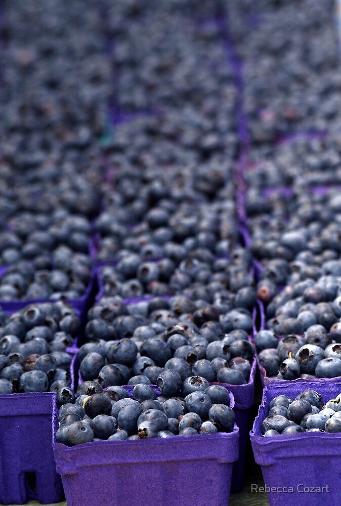 Blue....Blueberries by Rebecca Cozart