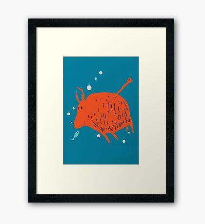 Water Buffalo Love Framed Print