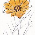 Cheerful Gerbera daisy (Gerbera jamesonii) by Maree Clarkson