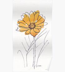 Cheerful Gerbera daisy (Gerbera jamesonii) Poster