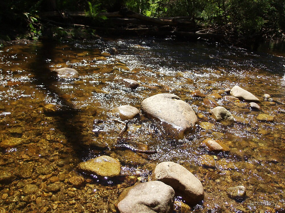 Creek in Cathedral Ranges  by lettie1957