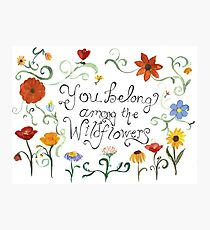You Belong Among the Wildflowers Photographic Print