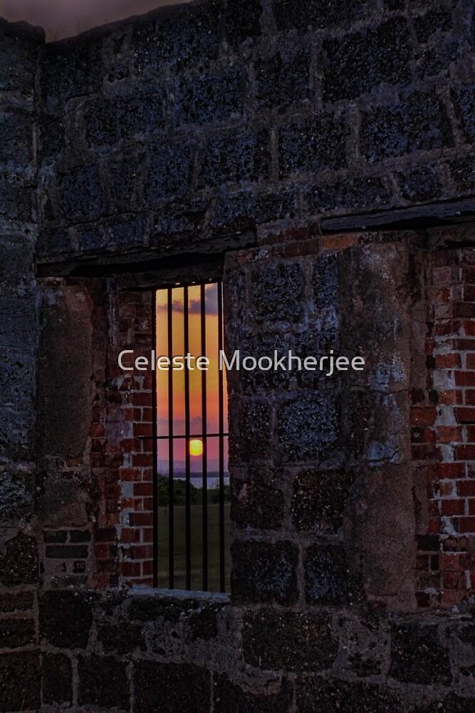 Freedom so close, so far by Celeste Mookherjee
