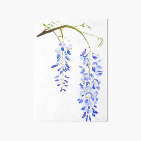 purple wisteria  Art Board Print