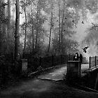 NightWing by Ravenor
