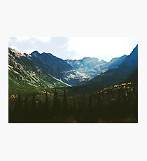 Alpine Meadow in the Spring Photographic Print