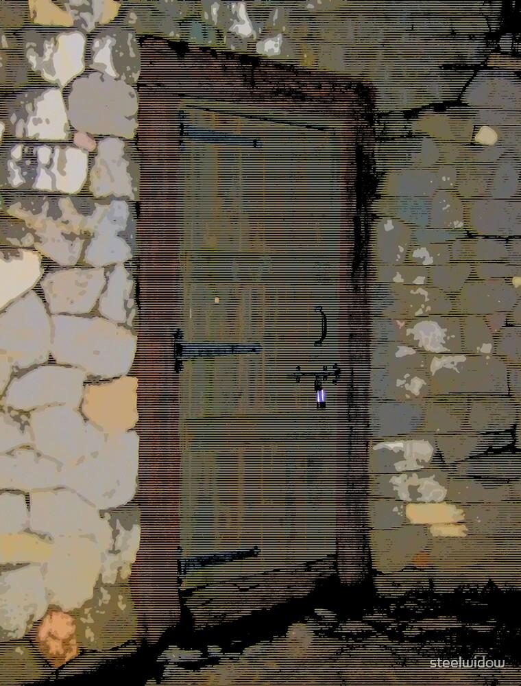 Comic Abstract Wooden Door by steelwidow