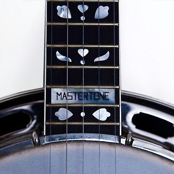 Gibson Earl Scruggs Mastertone Banjo - 2 by paultho