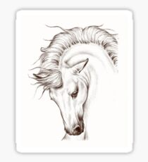 Andalusian Horse Drawing Sticker