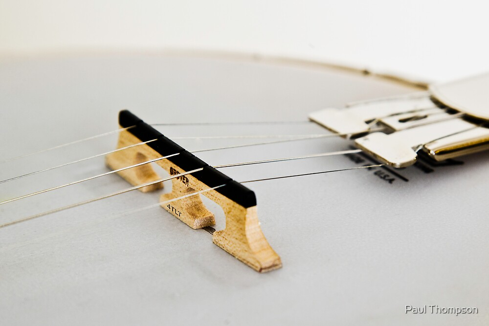 Gibson Earl Scruggs Mastertone Banjo - 13 by Paul Thompson